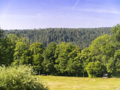 Hotel Schwarzwald Landschaft
