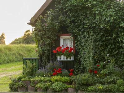 Hotel Schwarzwald Blumen